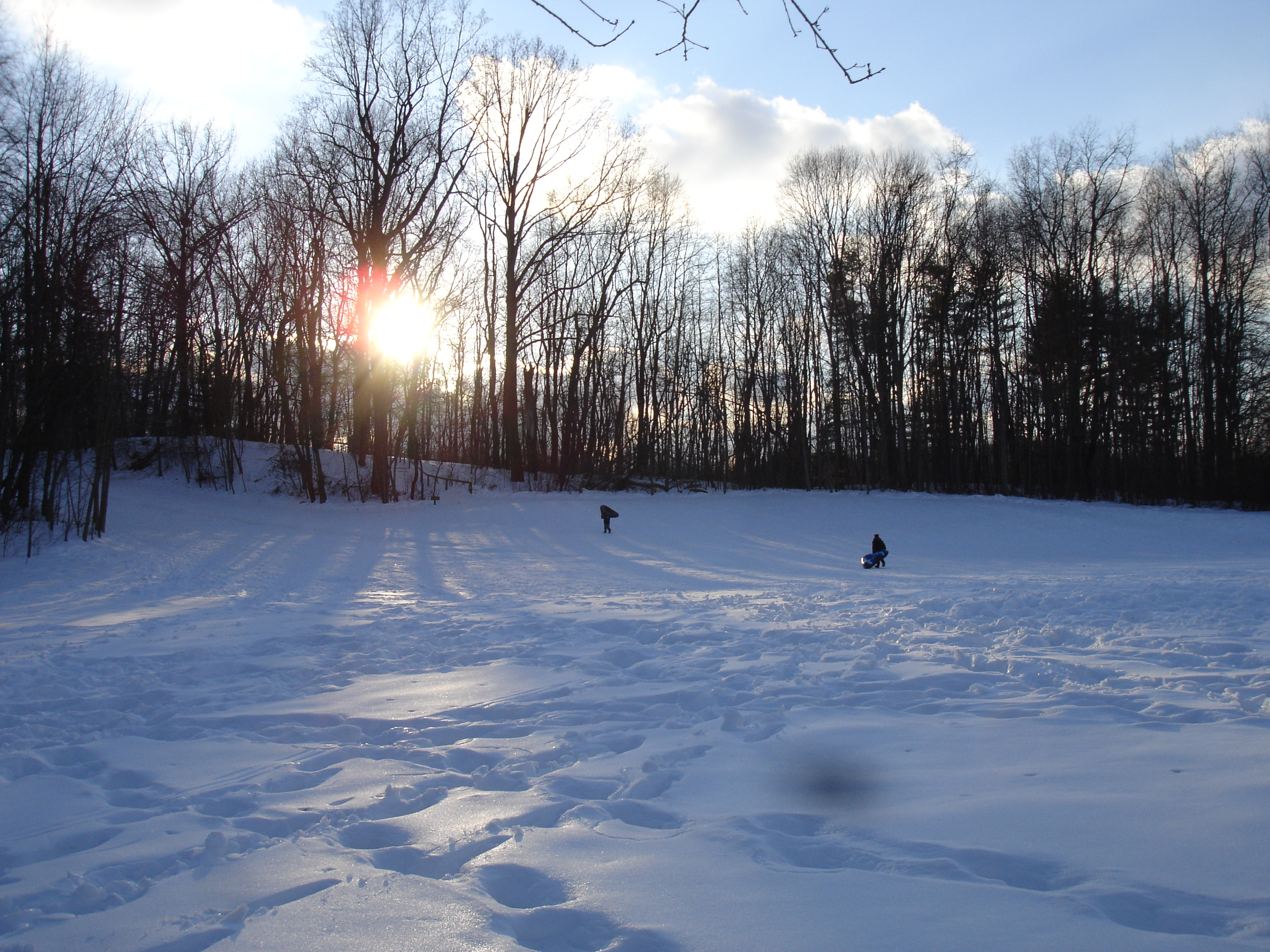 Monroe Park winter